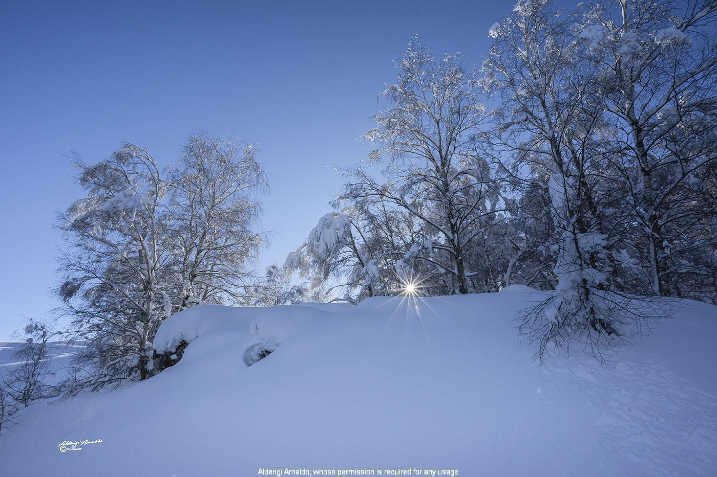 Alderigi Arnaldo Fotografo - LANDSCAPES IN THE SNOW - Photo Gallery